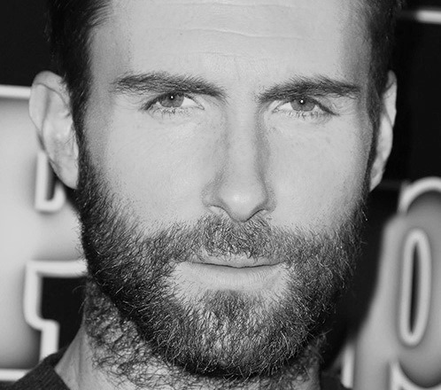 Mandatory Credit: Photo by Broadimage/REX (4270848d) Adam Levine 'The Voice' Top 10 Artist of Season 7 , Los Angeles, America - 24 Nov 2014